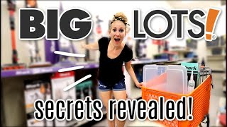 WHY YOU SHOULD BE SHOPPING AT BIG LOTS! 🚚 (not sponsored, furniture, home decor and more!)