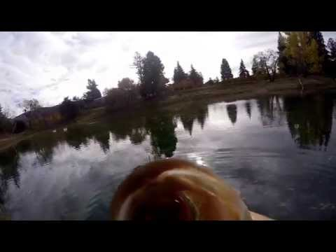 GoPro Jeffrey Pond Bass Fishing
