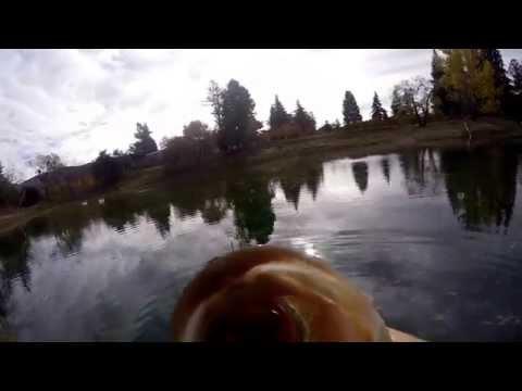 GoPro Jeffrey Pond Bass Fishing