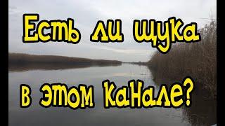 Краснодарский край рыбалка на каналах
