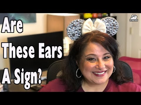 Will this Gift Motivate us to sail Disney? - Mail Monday Episode 25