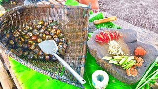 Primitive Culture: Find and Cooking Snails Curry, a Delicious Food in My Village
