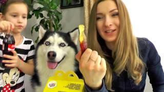 Обычная Еда против Мармелада! МАМА ПЛАЧЕТ ! Real Food vs Gummy Food   Candy Chal