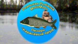 Поймать пескаря в реальной рыбалке