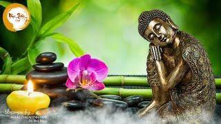 Nhạc Thiền Tĩnh Tâm | Tuyển Chọn Những Bài Nhạc Thiền Hay Nhất Giúp Tâm Thanh Tịnh An Lạc