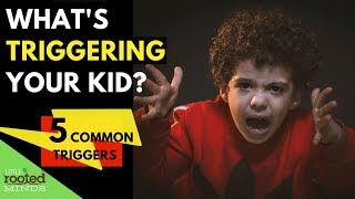 Emotional Regulation for Kids - 5 Common Triggers for Dysregulation