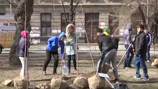 Employers of Dnipro IT Companies Joined Forces to Improve City Landscaping