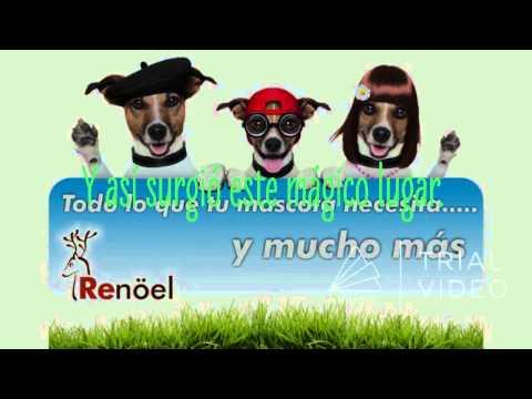 Videos from Renoel