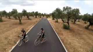 Lo natural sobre el asfalto en nuestras bicis de madera