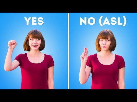 SIGN LANGUAGE FOR BEGINNERS - YouTube
