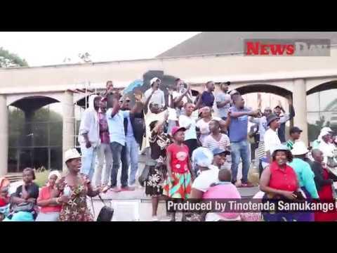 Video: Zanu-PF supporters demonstrate against imposition of Mnangagwa's nephew