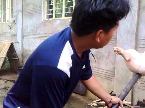 Mga review taong nabubuhay sa kalinga ng gamot