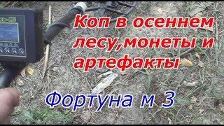 Фортуна м 3 КОП В ОСЕННЕМ ЛЕСУ МОНЕТЫ И АРТЕФАКТЫ №113