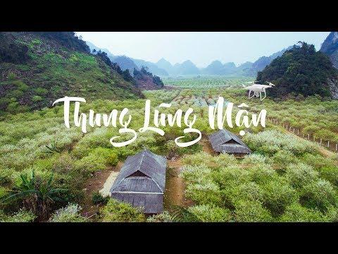 Thung lũng mận Nà Ka Mộc Châu flycam 4k