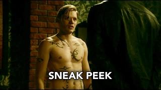 Sneak Peek VO # 2