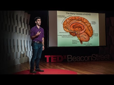 What we'll learn about the brain in the next century   Sam Rodriques