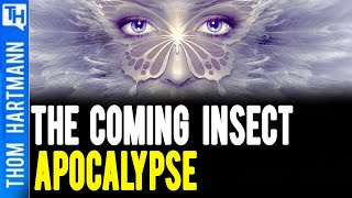 Will Our World Come to An End w/No Insects?