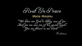 Evolution   Tribute To Marie Misamu
