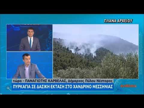Πυρκαγιά στην περιοχή Χανδρινός Μεσσηνίας | 10/08/2020 | ΕΡΤ