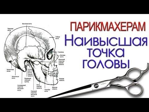 Артем Любимов - радиальный пробор и наивысшая точка головы.