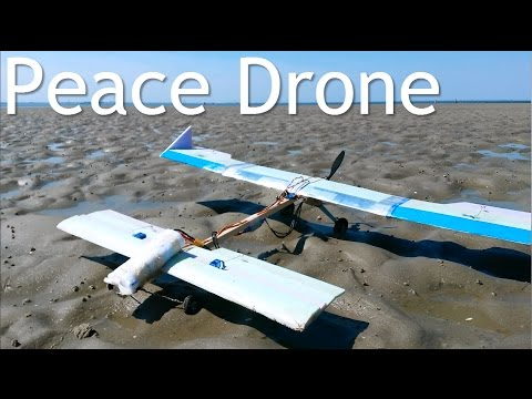 ansley-peace-drone-diy-rc-plane-on-a-stick-happy-flyer