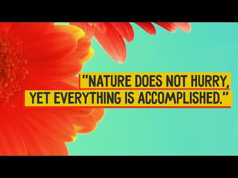 mp4 Natural Quotes About Life, download Natural Quotes About Life video klip Natural Quotes About Life