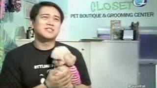 Georgette's Closet on QTV's Go Negosyo - Dog & Cat Boutique and Grooming