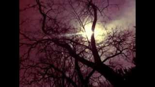 Christopher Holland - Afterglow - Chris Holland - Corner Green - Katy Shotter