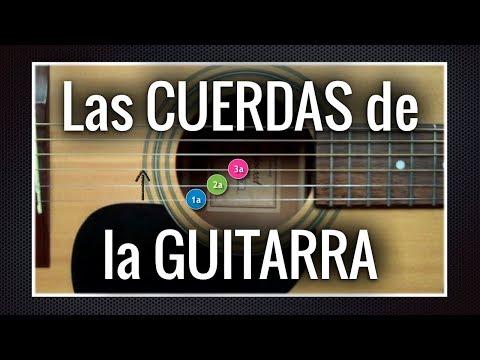 Las cuerdas de la guitarra | Aprendiz de Guitarra TV