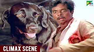 Moti Kills Sadashiv - Climax Scene   Teri Meherbaniyan Movie Scene   Popular Hindi Movie