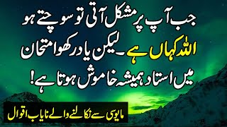 Beautiful Quotes Of Life & Love | Urdu Quotes Whats App Status | Collection Of  Quotes in Urdu |