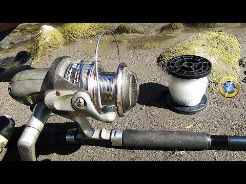 Scatola per inverno pescando dalle mani con il congelatore