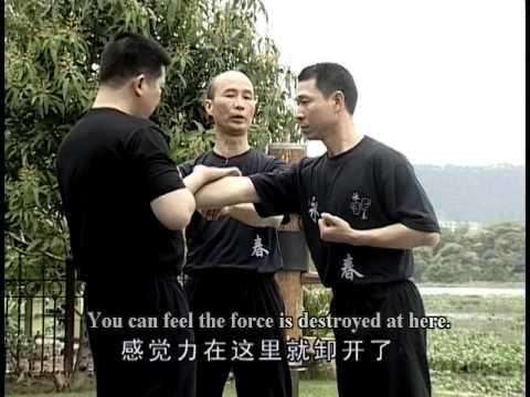 Wing Chun Practice
