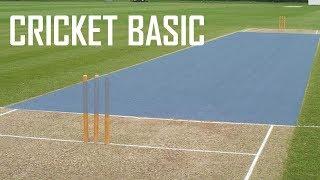 Cricket Basic Parameters – Cricket Fielding Positions – Batting Shots in Cricket