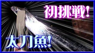 タチウオ! ワインド初挑戦! 【 太刀魚 和歌山 釣り 】