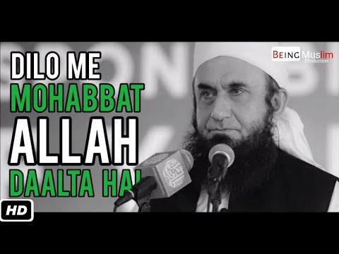Dilon Mein  Mohabbat