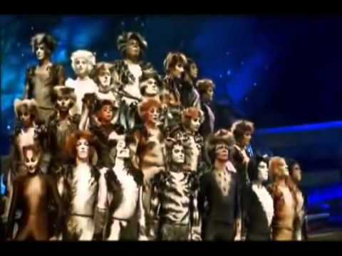 Jellicle songs for jellicle cats cats stopboris Image collections