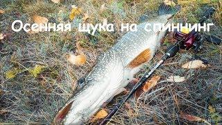 Выбор места на речной рыбалке поздней осенью