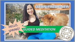 Guided Meditation to Let Go || Mind and Breath Exercise to Feel Fresh & Clean (Ft. Fluffy Doggo)