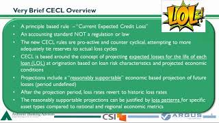 Watch:  The CECL Journey - Regulatory Expectations for Implementation  -  With Special Guest Michael