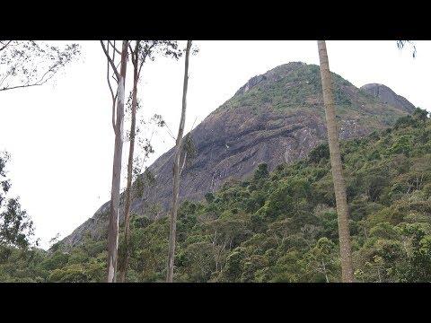 Você já visitou o Parque Natural Municipal Montanhas de Teresópolis?
