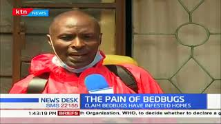 Bedbugs menace strike in a Naukuru estate