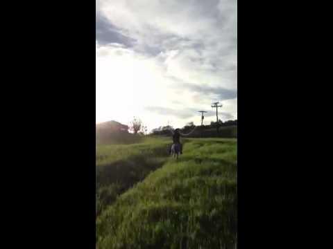 Cavalgada em Palmeirina