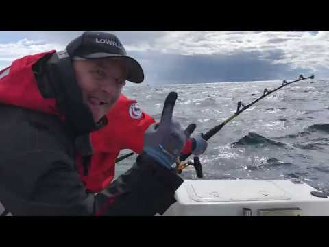 Fiskeri efter blåfinnet tun i Danmark 2018