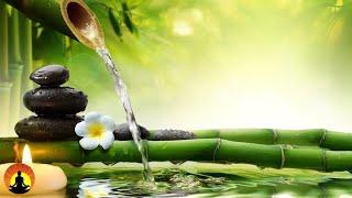 Relaxing Music, Healing Music, Meditation Music, Sleep Music, Yoga Music, Relax, Study Music ☯3564