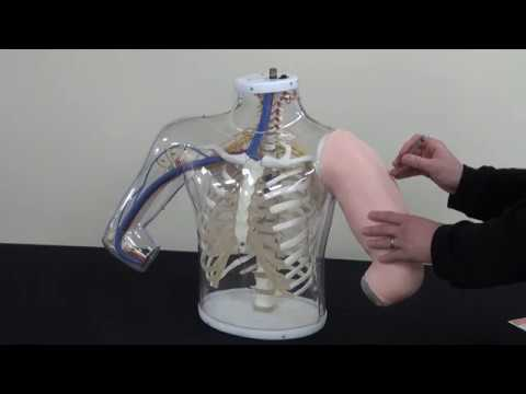 Support Video - Upper Arm intramuscular Injection Simulator