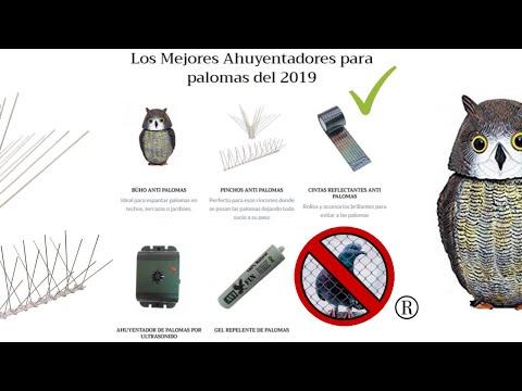 【Los Mejores ✔ AHUYENTADORES de PALOMAS 】 ®