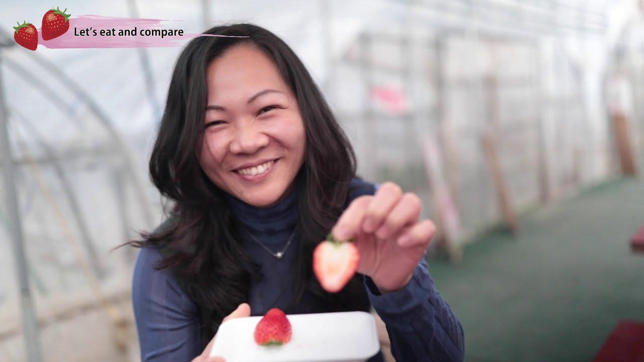 Eat Tochigi! - Strawberry -