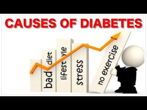 Insulin-Zink-Bedienungsanleitung