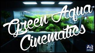 Węgierskie Green Aqua zmienia siedzibę